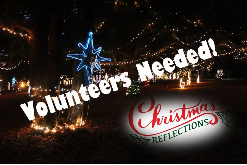 "Millions of Christmas lights at night with words on top ""Volunteers Needed"""