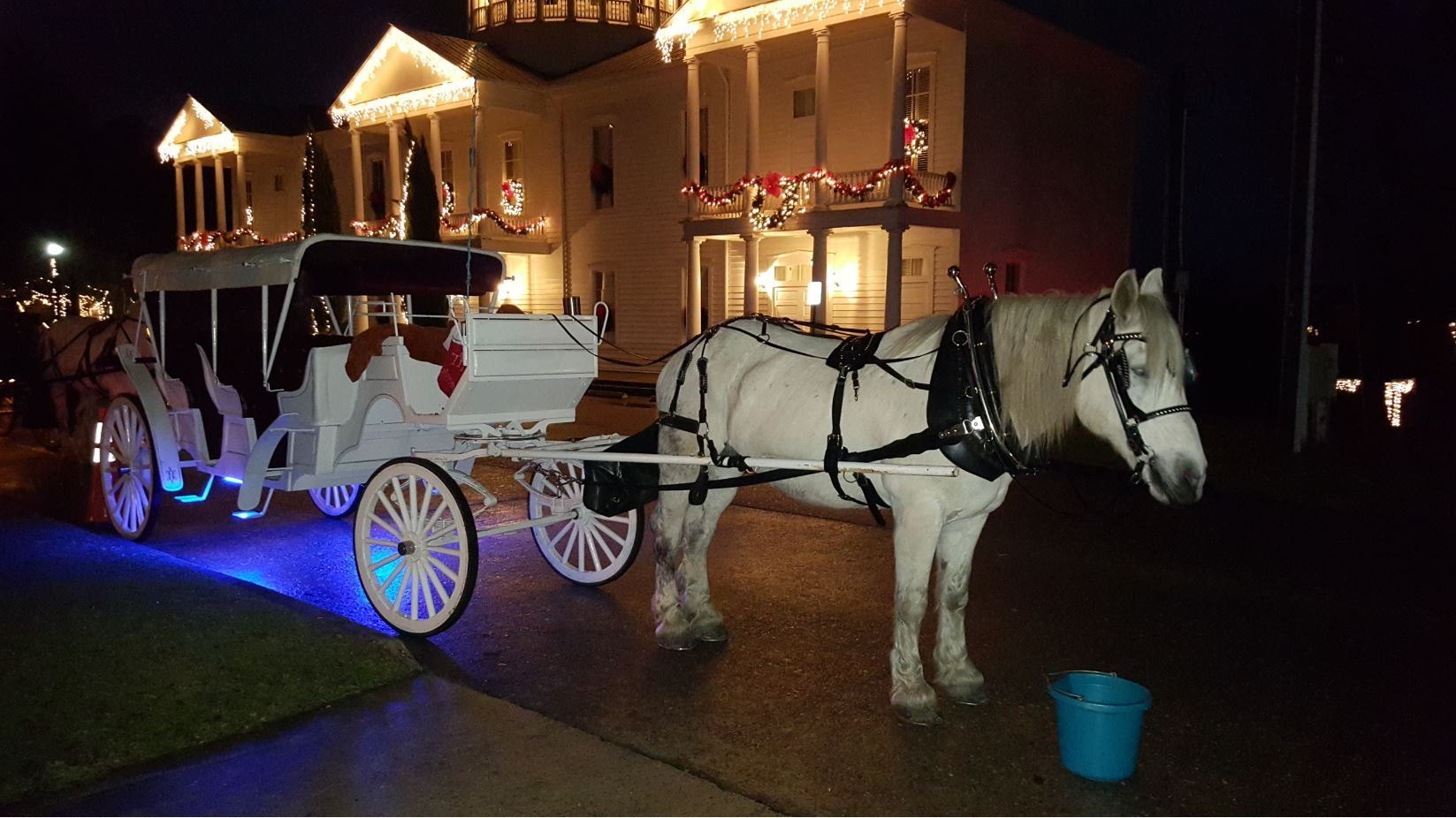 A horse and carriage in front of a large building illuminated with Christmas lights